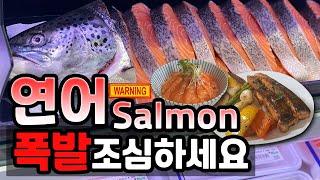 연어 스테이크냐 덮밥이냐 (폭발주의) - Salmon …