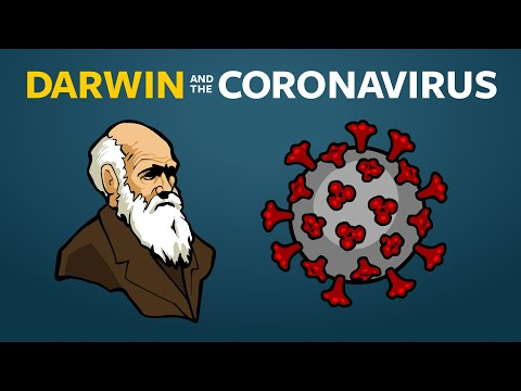 Where Do New Viruses Come From?