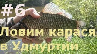 Ловим карася в Удмуртии на пруду близ д. Старая Салья|Catch carp in the Udmurt Republic in the pond
