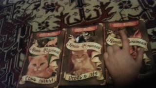 Обзор книг коты воители