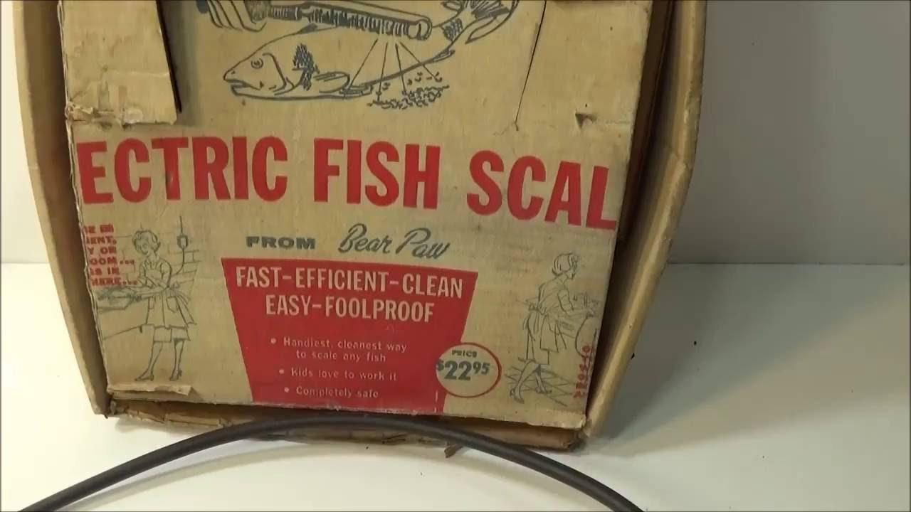 Bear Paw GFS Power Drive Fish Scaler 13032