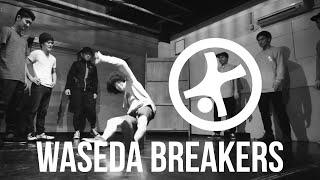 Waseda Breakers - 28 lat w grze - Trailer