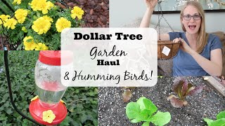 Dollar Tree Garden Haul & Hummingbird How-To!
