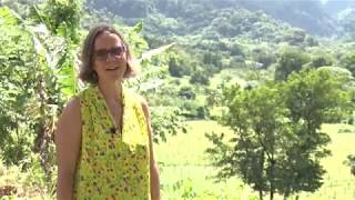 Our Forest Garden - Sustainable Tourism and Food Production