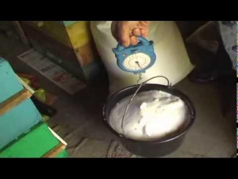 Как приготовить сироп для подкормки пчел осенью