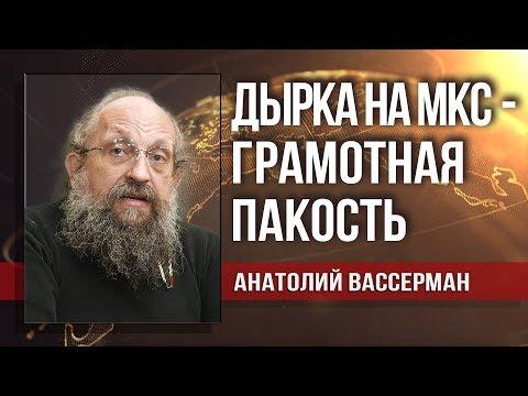 Анатолий Вассерман. Дикая