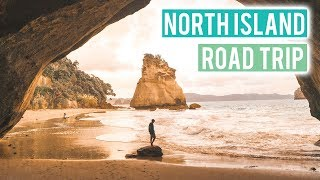 Most Beautiful Spot on the North Island | Hot Water Beach & Cathedral Cove | Wild Kiwi