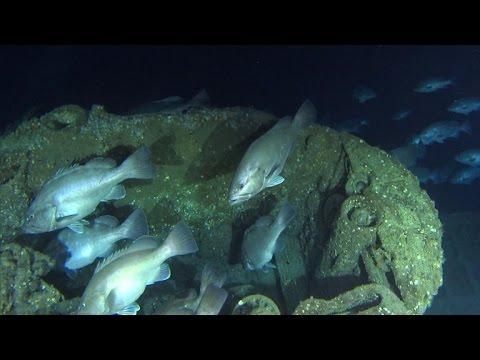 Exploring A U-Boat Wreck Off North Carolina