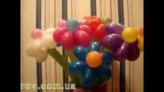 Букет цветов из воздушных шаров stosharov.com.ua