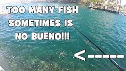 HORDES of Fish Sometimes is NO BUENO!!! (FL Slam EP3) (Boca Raton, FL)
