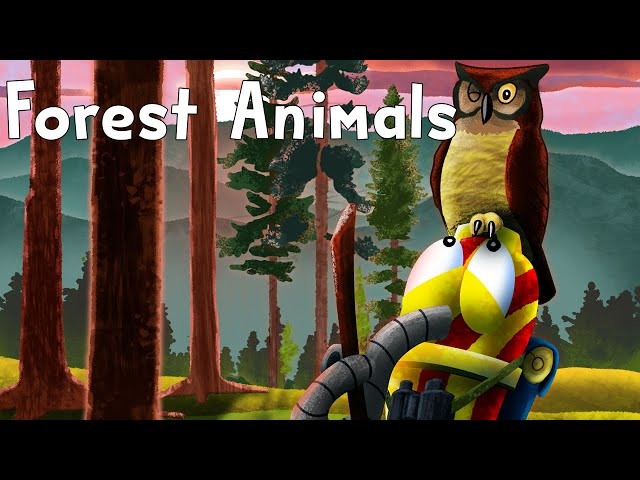 Reading Road Trip Ep4: Forest Animals