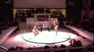 Sumo + Sushi Show 1