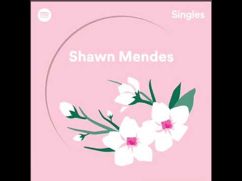 Shawn Mendes - Use Somebody Recorded at Spotify Studios NYC