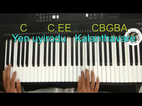 Thayinum melai (Levi 2) SONG IN KEYBOARD, LEAD, WITH NOTES.Pastor. JOHN JEBARAJ