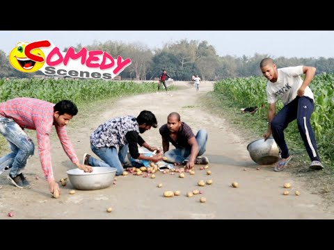 Top Comedy Scense 2020 || Bindas fun joke ||