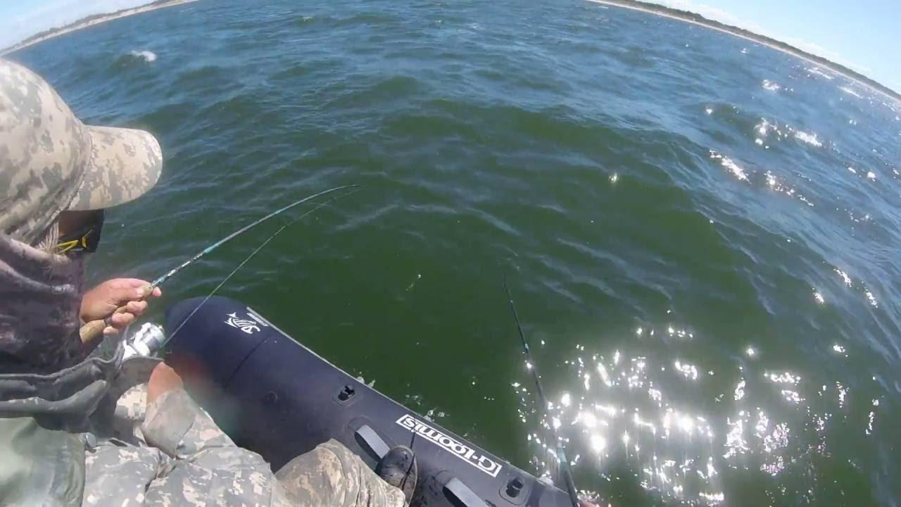 В нашем интернет-магазине лодок и моторов «лодки-питер» вы можете купить надувные резиновые лодки и. Лодочный мотор tohatsu m3. 5 b2s.
