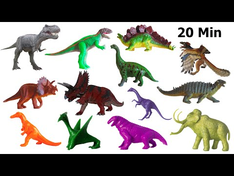 Dinosaurs Collection - Counting, Colors, Jurassic, Cretaceous - The Kids