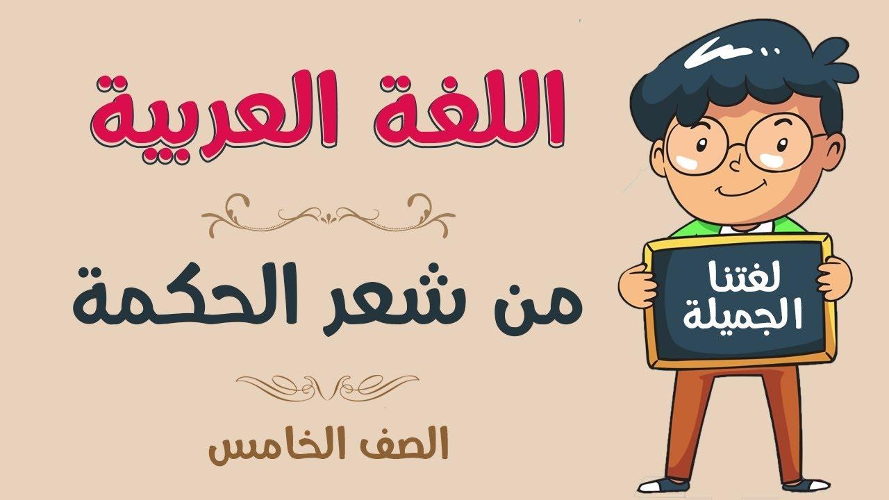 اللغة العربية   الصف الخامس   من شعر الحكمة - YouTube