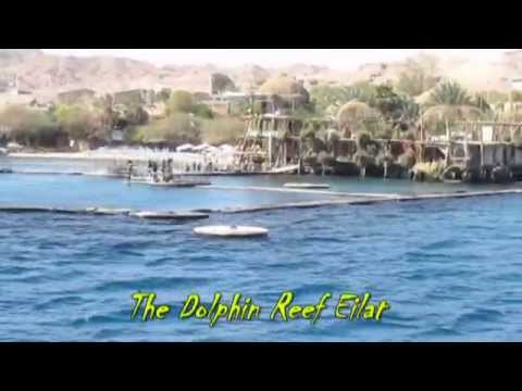 Jules Verne ship in Eilat, Israel with Zahi Shaked a tour guide