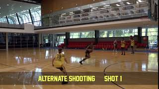 Shooting alternate shooting 1