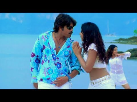 Boss Movie Songs - Hello Baasu - Nagarjuna Nayantara Poonam Bajwa