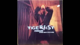 DJ Tiger Fist - Stargazin' (Feat. Takbir of Styles of Beyond)