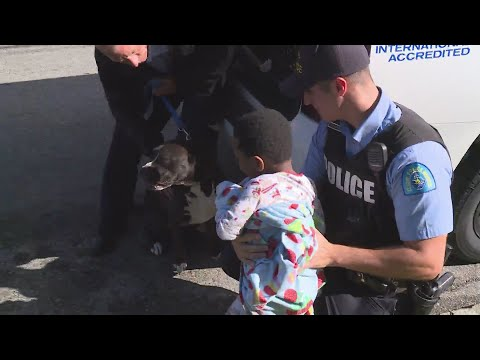 Missing toddler reunited with his father; stray dog seen 'guarding' the wandering child