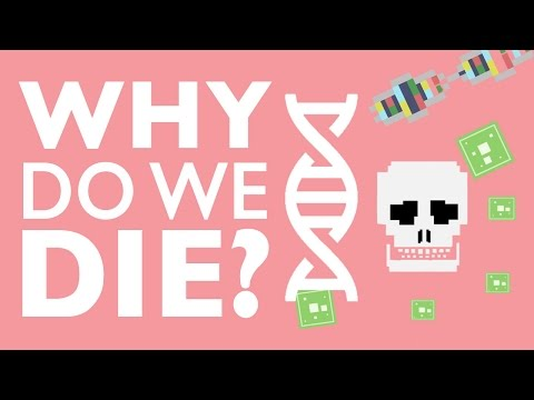 WHY DO WE DIE?