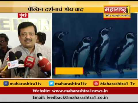 Credit Debate Over Penguin Exibition In Mumbai