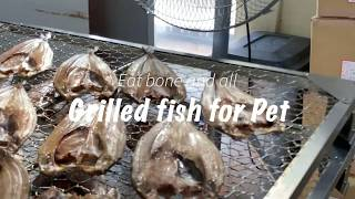 Eat it bone and all Grilled fish for Pet