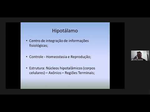 bioquímica-clinica---função-endócrina-parte-i---12/06/2020