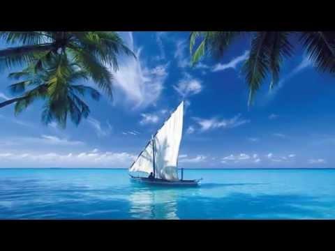 8 hours - Best Relaxing Music: Piano, Ocean Waves - Música Relaxante - Música Relajante