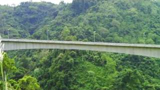 Agas-agas Bridge Midst the Rainforest