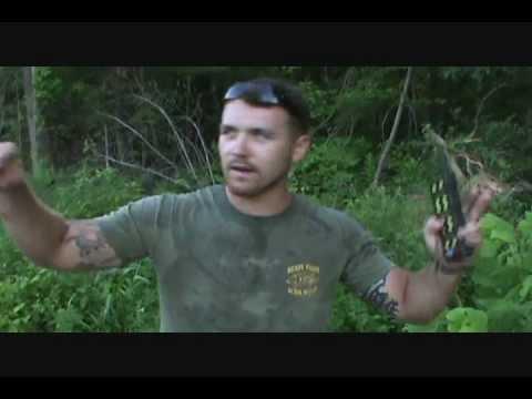 Basics Of Crow Hunting