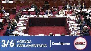 Sesión Comisión de Constitución 3/6 (20/05/19)