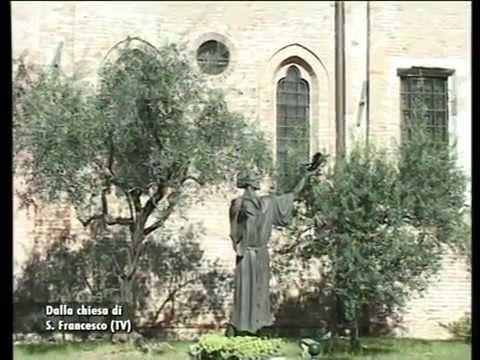 Santa Messa dalla Chiesa di San Francesco - Treviso