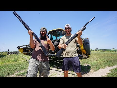 1 Hour Hunting Challenge on the Farm!! (Catch Clean Cook) Grilled Dove
