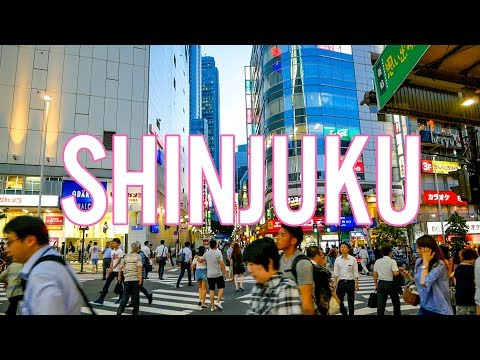 Meeting My Japanese High School Friends   A Day in Shinjuku