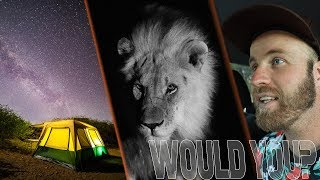 Would YOU Wild Camp with LIONS and ELEPHANTS??