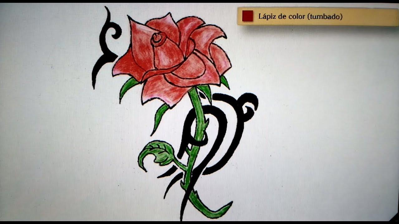 Dibujo De Una Rosa A Lapiz. Simple Len Rosa In Progress