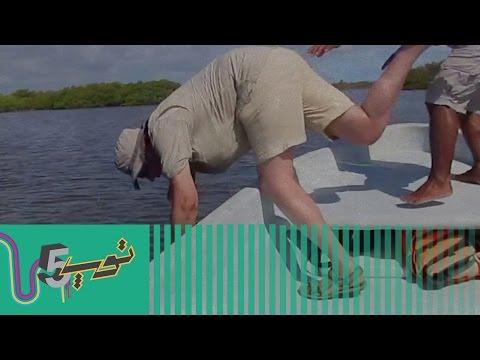 فيديو أفضل 5 طيحات على الهواء