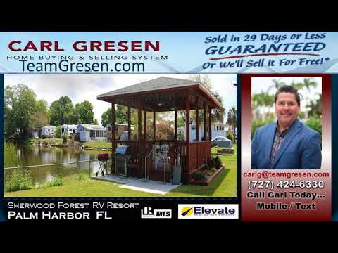 Number One Top Realtor Sales Agent inPalm Harbor Florida