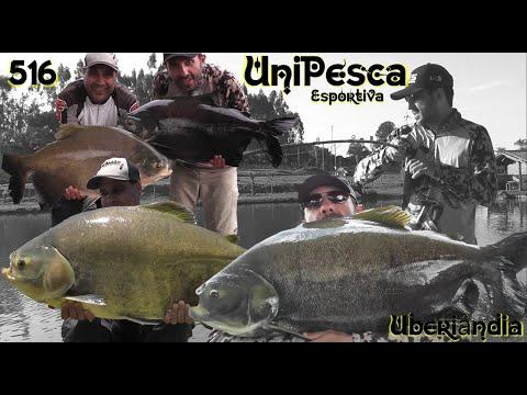 Unipesca - Pescaria com muita adrenalina em MG - Fishingtur na TV 516