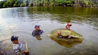 GoPro: The Jungle, The People, and The Fish That Could Save It All