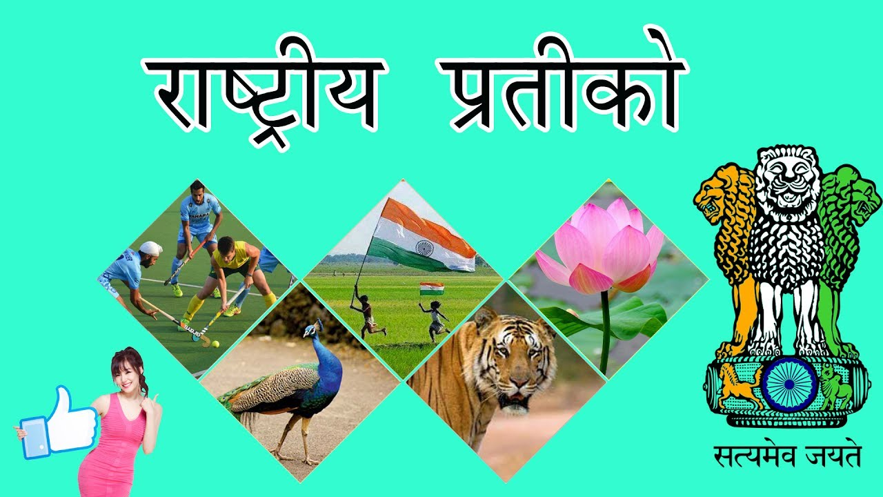 Indian national symbols in hindi indian national symbols in hindi hindi nursery rhymes videos ccuart