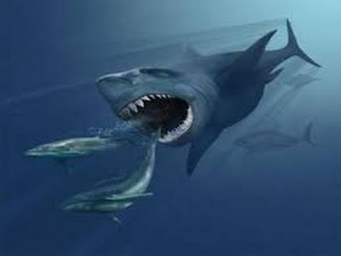 Mexico's Giant Prehistoric Sharks Nature Documentary ★ Prehistoric Channel HD