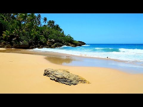 Ocean Sounds for Sleeping, Meditation, Yoga on a Tropical Beach