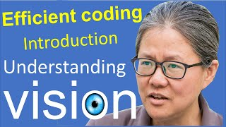 Introduction to efficient coding in early vision