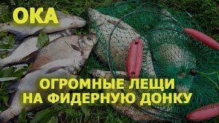 Ловля леща летом на фидер на реке Ока / Отчет о бесплатной рыбалке Подмосковье в июне 2019.