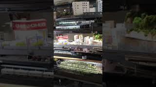 柏葉鉄道 第二新都市線 三階層同時走行